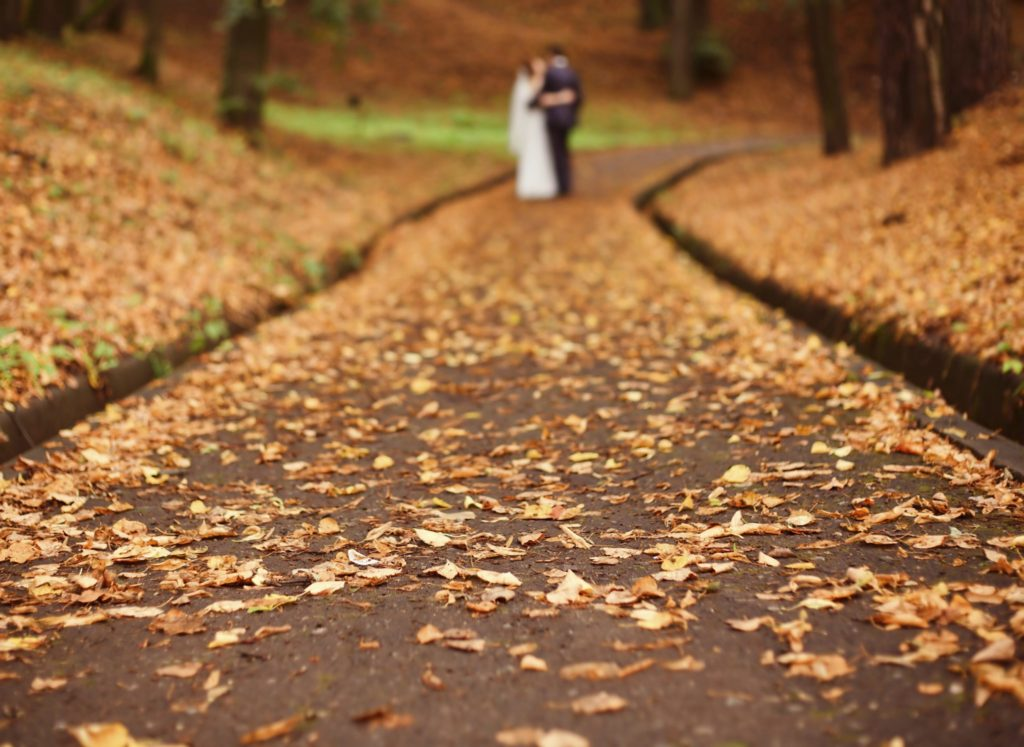 couple-on-autum-path-istock_000010609996_medium